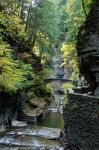 Ithaca in the Fall stock 022 by FairieGoodMother