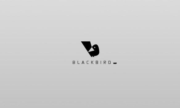 black bird by pedroography