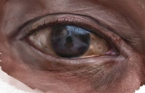 Human Eye Study by GaryStorkamp