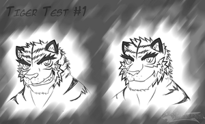 Tiger Face Test 1 by WarGreymon43
