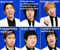 Our Funny Super Junior by Zeljkae