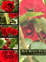 Red Roses Pack by ALP-Stock