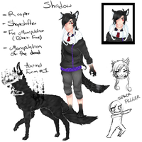 Shadow Refference Sheet (sort off) by Shadow-Shinigami