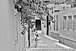 ...Old Town - Dubai BW... by Elegance85