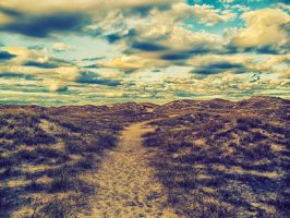 Trail to oceanside by denehy
