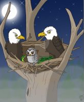 The Eagles Nest by Electric-Mongoose
