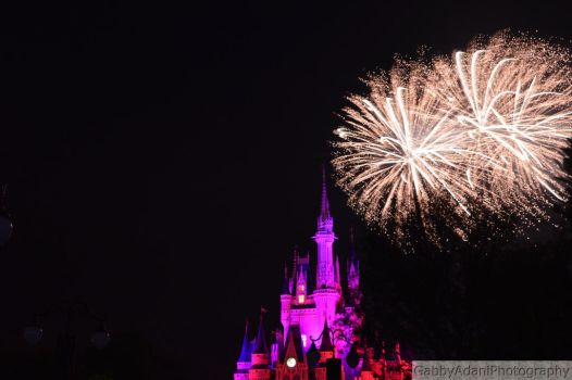 Wishes in the Magic Kingdom by LachlanRobFrags
