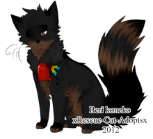 Up For Adoption by xRescue-Cat-Adoptsx