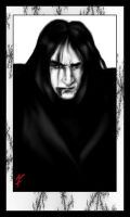 Fight Snape by flam