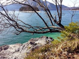 Walchensee by silver80