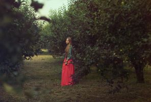 apple garden by SolMay