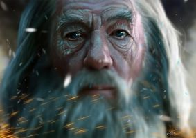 Gandalf 2.0 by 5IC