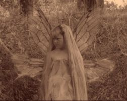 alanis fairy by nightwing1975