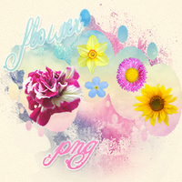 png flower by grapicstyle