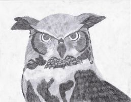 Great Horned Owl by Kilalaflames
