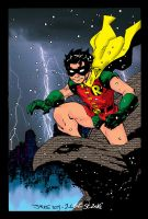 Robin by Jim Lee n ME by JamesLeeStone