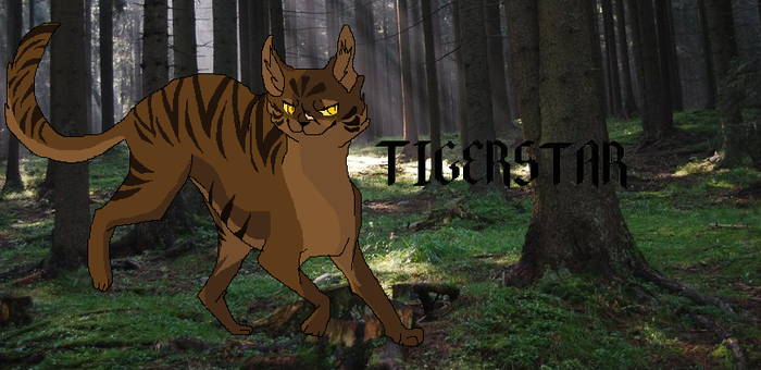 [Warrior Cats]The leader of Shadowclan, Tigerstar. by JagodowaBabaeczka