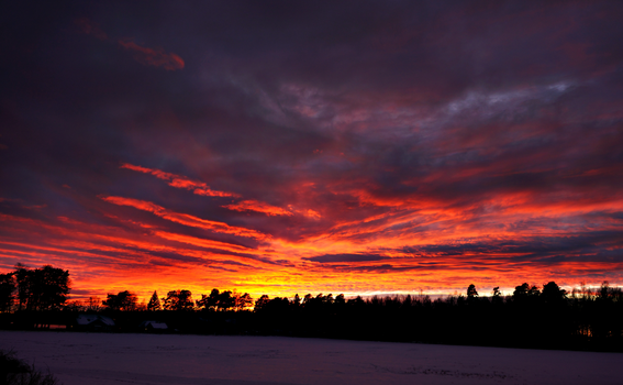 Burning cloud by spindelweb