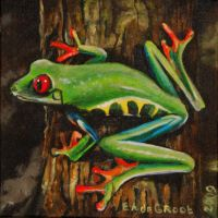 painted frog by dutchway