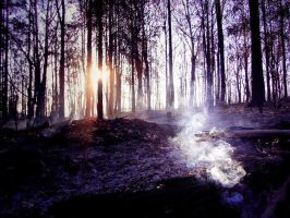 set in ashes. by jesika8