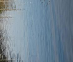 Water Texture II by Gwendolyn12-stock