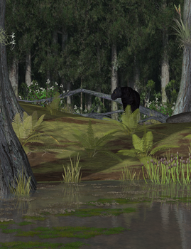 Panther in Cypress Swamp by KenGilliland