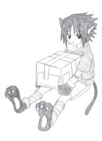 Neko Sasuke Box by Rainbow--Ferret