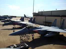 F 15 eagles by Flyboy008