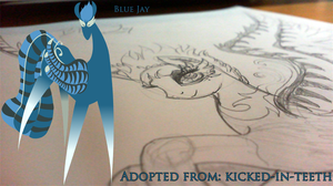 Blue Jay WIP by Lost-in-Equestria