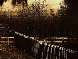 Nature_dark_fence 03 by Aimelle-Stock