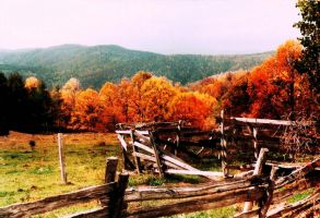 Fall in the country by bewilderedconfused