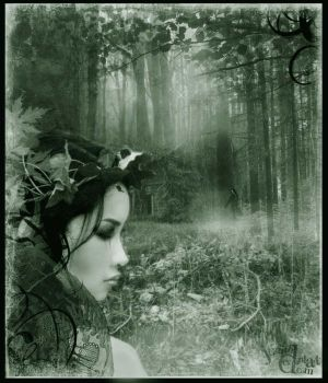 Deep in the Forest by judith