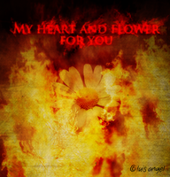 My heart and flower for you by Hvan