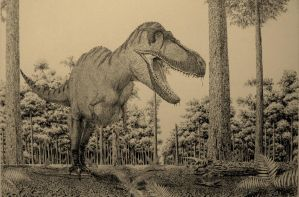 Unknown Tyrannosaur by Frank-Lode