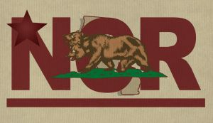 Fallout 2 NCR Flag by Whatpayne