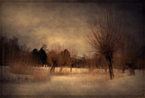 winter silence by latoday