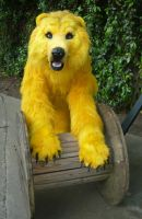 Golden Bear by LilleahWest