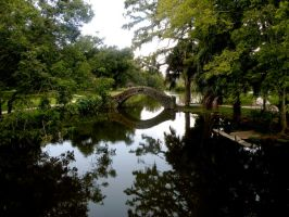 New Orleans City Park 04 by nevertakemystock
