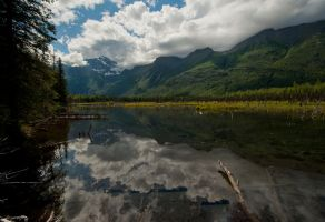 Eagle River Marshes by jamezevanz