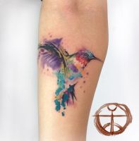 humming bird by koraykaragozler