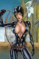 DC's Catwoman by Clu-art
