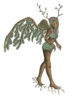 Winged Dryad by Xynk