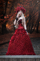 Covered by roses by absentia-veil