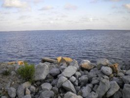 Escambia Bay by anonymous-nyne