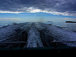 OUTRUNNING THE STORM by CorazondeDios
