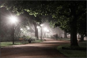 A night stroll in the park by macu