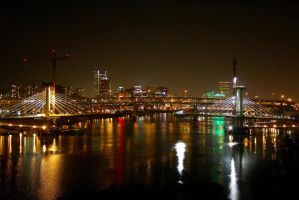 portland oregon milwaukie light rail bridge by ringmale