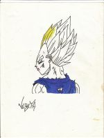 DBZ Vegeta Back by eigthuan