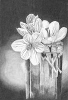 Diner Flowers by DrawingsByTony
