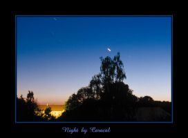 Night by caracal